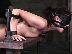 squeezed in a obedience device and fucked heavy